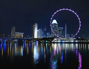 singapore travel without passport